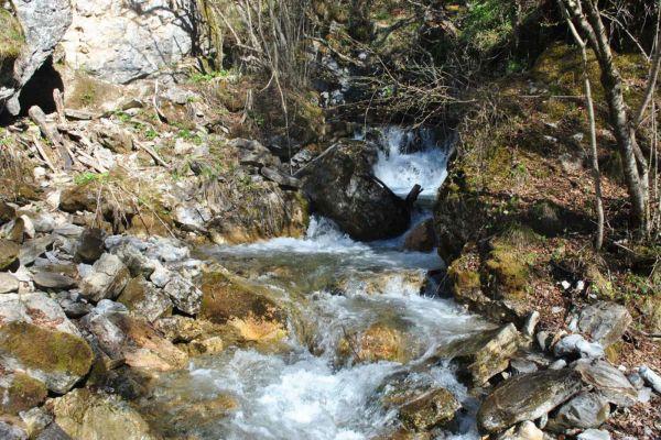 prirodnoto-bogatstvo-na-selo-zirovnica-tairovska-reka-292C2CC3C-AE9E-E875-DB38-61976BDEFDC9.jpg