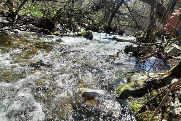 prirodnoto-bogatstvo-na-selo-zirovnica-tairovska-reka-30B84CFE9-AE90-CFDE-1B7E-1C4AC8E7777C.jpg