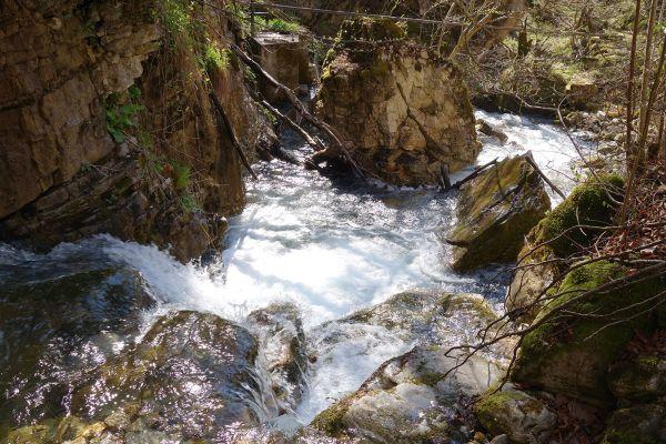 prirodnoto-bogatstvo-na-selo-zirovnica-tairovska-reka-103B938018-AA6B-55D0-2F13-2DA1D1838512.jpg