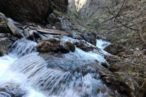 prirodnoto-bogatstvo-na-selo-zirovnica-tairovska-reka-12154D67B7-B340-A612-8BD7-83D7B08CD409.jpg