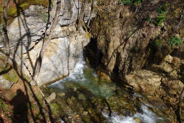 prirodnoto-bogatstvo-na-selo-zirovnica-tairovska-reka-14D8759641-4313-3F5B-FC5D-6458ED0AA2C2.jpg