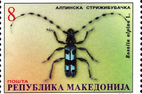makedonskata-priroda-niz-postenskite-marki-2FF75DD15-3B24-FA86-7C9D-287DFB58AA14.jpg