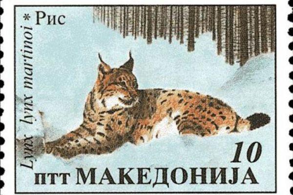 makedonskata-priroda-niz-postenskite-marki-19E471E59F-7899-D82C-C2B3-9CEB7942E862.jpg