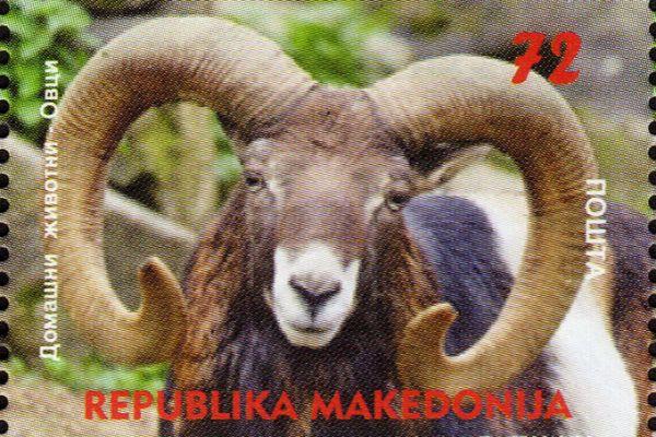 makedonskata-priroda-niz-postenskite-marki-32ABEA17EA-A5A9-B29F-D44B-98F107D3C6C9.jpg